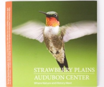 Strawberry Plains Bird